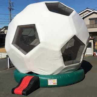 soccer_cate.jpg
